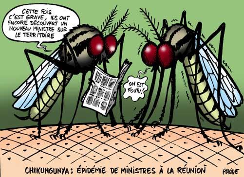 06-02-27-chikungunya.jpg